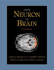 From Neuron to Brain 4th edition 9780878934393 0878934391