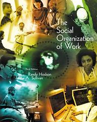 The Social Organization of Work 3rd edition 9780534552787 0534552781