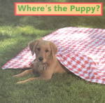 Where's the Puppy? 0 9781887734097 1887734090