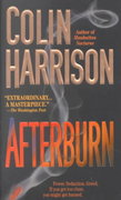 Afterburn 1st edition 9780312978709 0312978707