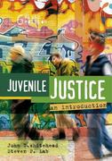 Juvenile Justice 6th edition 9781593456139 1593456131