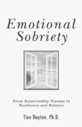 Emotional Sobriety 1st edition 9780757306099 0757306098