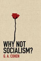 Why Not Socialism 1st Edition 9780691143613 0691143617