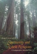 Sprituality and World Religions 1st edition 9781559349628 155934962X