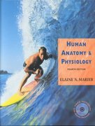 Human Anatomy and Physiology 4th Edition 9780805341966 080534196X