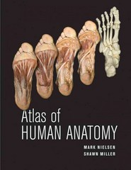 Atlas of Human Anatomy 1st edition 9780470501450 0470501456