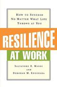 Resilience at Work 0 9780814415955 0814415954