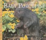 Baby Porcupine 1st edition 9781550415605 1550415603