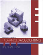 Fundamentals of Advanced Accounting 1st edition 9780072934816 0072934816