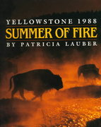 Summer of Fire 0 9780531059432 053105943X