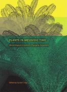 Plants in Mesozoic Time 0 9780253354563 0253354560