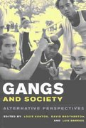 Gangs and Society 1st Edition 9780231121415 0231121415