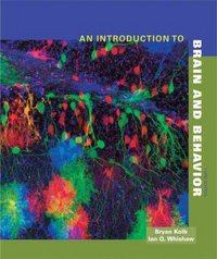 An Introduction to Brain and Behavior, Third Edition 3rd edition 9780716776918 071677691X