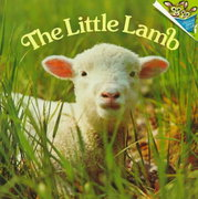 The Little Lamb 0 9780394834559 0394834550