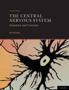 The Central Nervous System 4th Edition 9780199701049 0199701040