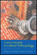 Core Concepts in Cultural Anthropology 2nd edition 9780072818604 0072818603