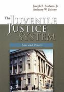 The Juvenile Justice System 0 9780195330182 0195330188