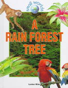 A Rain Forest Tree 0 9780778701323 0778701328
