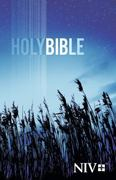 NIV Outreach Bible - Blue Wheat Cover 1st Edition 9781563205774 1563205777