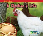 A Chicken's Life 0 9781432941390 1432941399