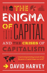 The Enigma of Capital 1st Edition 9781847652010 1847652018