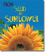 From Seed to Sunflower 0 9781403478665 140347866X