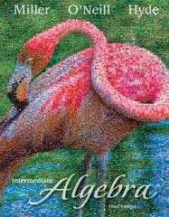 Loose Leaf Intermediate Algebra 3rd edition 9780077401801 0077401808