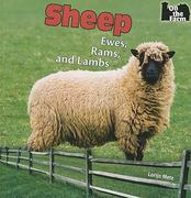 Sheep 1st edition 9781448813414 1448813417
