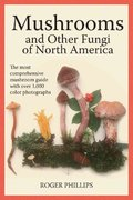 Mushrooms and Other Fungi of North America 2nd Edition 9781554076512 155407651X