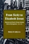 From Sicily to Elizabeth Street 1st Edition 9780873957694 0873957695