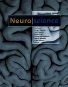Neuroscience 3rd Edition 9780878937257 0878937250