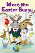 Meet the Easter Bunny 0 9780316129015 0316129011