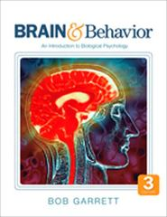 Brain & Behavior 3rd edition 9781412981682 1412981689