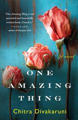 One Amazing Thing 1st Edition 9781401341589 1401341586