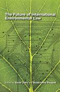 The Future of International Environmental Law 0 9789280811926 9280811924
