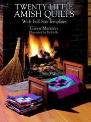 Twenty Little Amish Quilts 0 9780486275826 0486275825