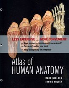 Atlas of Human Anatomy 1st edition 9780470917473 0470917474