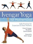 Iyengar Yoga for Motherhood 0 9781402726897 1402726899