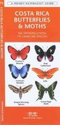 Costa Rica Butterflies and Moths 1st edition 9781583553404 1583553401