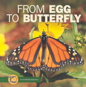 From Egg to Butterfly 0 9780822507130 0822507137