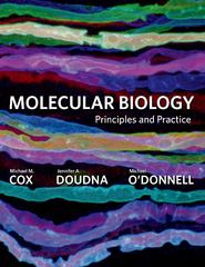Molecular Biology 1st edition 9780716779988 0716779986