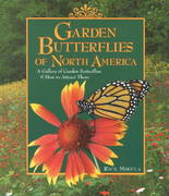 Garden Butterflies of North America 0 9781572233065 1572233060