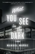 What You See in the Dark 1st Edition 9781565125339 1565125339