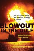 Blowout in the Gulf 1st Edition 9780262015837 0262015838