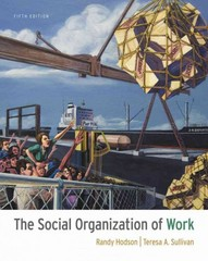 The Social Organization of Work 5th edition 9781111300951 111130095X