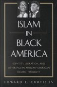 Islam in Black America 1st Edition 9780791453704 0791453707