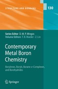 Contemporary Metal Boron Chemistry I 0 9783642097393 3642097391