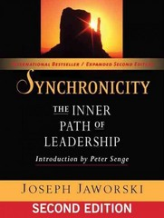 Synchronicity 2nd Edition 9781609940171 1609940172