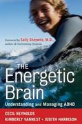 The Energetic Brain 1st edition 9780470615164 0470615168