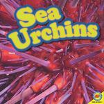 Sea Urchins 0 9781616906955 1616906952